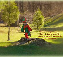 The Elf in the Field by TrendleEllwood
