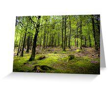 Green trees around Lake Buttermere, Lake District, UK Greeting Card