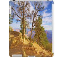 The Grand View  # 3 iPad Case iPad Case/Skin