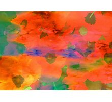 Splash of colors   Photographic Print
