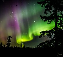 2015 Auroras 4 by peaceofthenorth