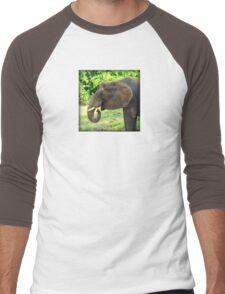 Close Up of Elephant Eating Grass Men's Baseball ¾ T-Shirt