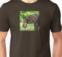 Close Up of Elephant Eating Grass Unisex T-Shirt