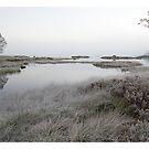 Mist and frost on Rannoch Moor by Geraldine Lefoe