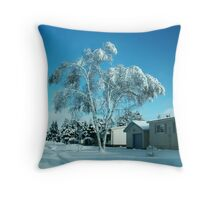 BEAUTIFUL WINTER SCENE...WITH BIRCH COVERED TREE PICTURES - PILLOWS - TOTE BAGS ECT Throw Pillow