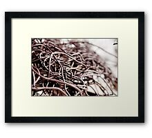 Rusty Wires  Framed Print