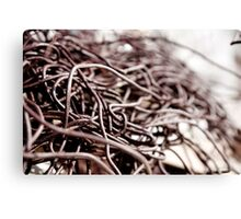 Rusty Wires  Canvas Print