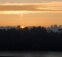 Sun Pillar by Sue Robinson