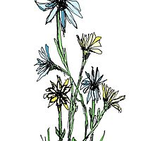 Daisies by Frederick James Norman