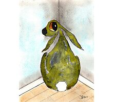 HARE IN THE NAUGHTY CORNER Photographic Print