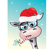 Critterz - cow Christmas spirit Photographic Print
