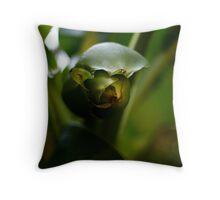 Green colour Throw Pillow
