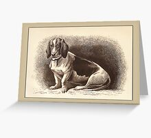 French Basset General Greetings Greeting Card