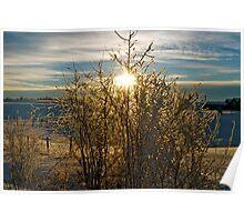 Alberta Sky, Winter - Alberta, Canada Poster