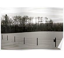 Winter Landscape B&W Alberta, Canada Poster
