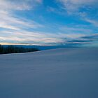 Serene Scene - Winter in Alberta Canada by Jessica Karran