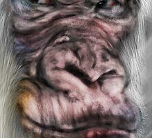 The Wise White Gorilla  by astroart