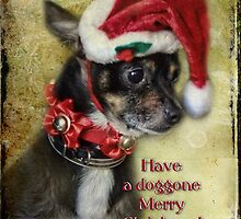 Have a Doggone Merry Christmas! by vigor