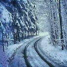 Winter's Road by Joe Misrasi
