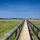 Wooden Bridge, Newtown, Isle of Wight  by Rod Johnson