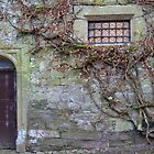 Window at Cotehele House by magicaltrails