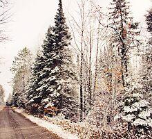 Snowy Road by Sarah Van Geest
