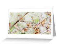 Watercolor Blossoms Greeting Card