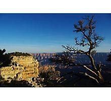 North Rim, Grand Canyon Photographic Print