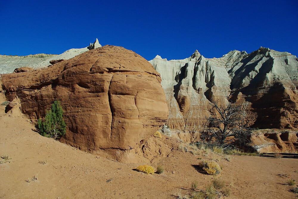 Kodachrome Basin, Utah by Claudio Del Luongo