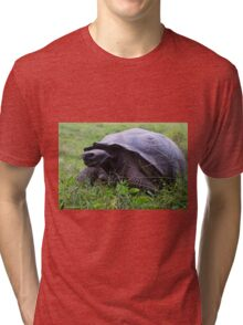 giant tortoise Tri-blend T-Shirt