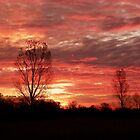 November Sunset in Winneconne WI by mussermd