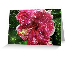 Starry Hibiscus  Greeting Card