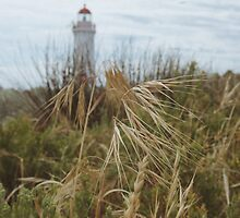 Port Fairy Lighthouse by hangingpixels