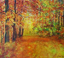 Forestpath in autumn by olivia-art