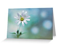 A Touch of White Greeting Card
