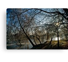 Frosty morning at Woodland Waters, Ancaster Lincolnshire Canvas Print