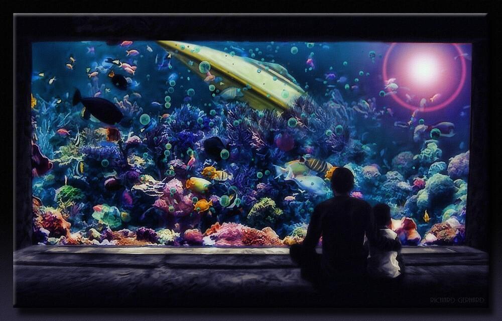 The Aquarium by Richard  Gerhard