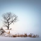 Winter Landscape by KBritt