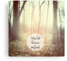 was lost but now am found Metal Print