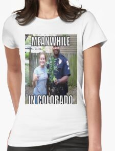 Meanwhile in Colorado Womens Fitted T-Shirt
