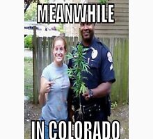 Meanwhile in Colorado Unisex T-Shirt