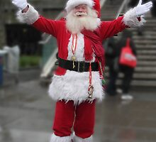 Has anyone seen my Reindeer ? by Sandra Caven