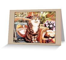 Cat on Chair Greetings Greeting Card