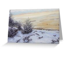 Bellever Forest Oil on Canvas Greeting Card
