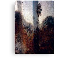 Rust # 400 Canvas Print
