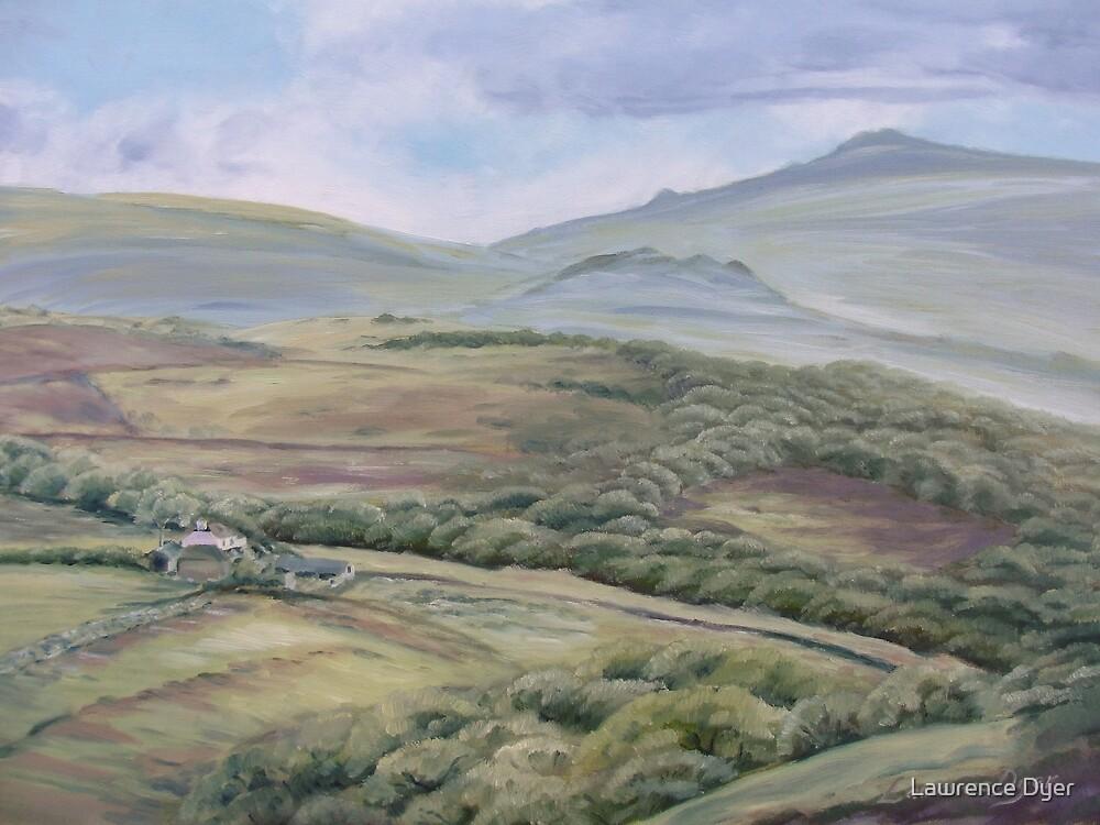 View Nearby The Dartmoor Inn, Merrivale, Devon by Lawrence Dyer