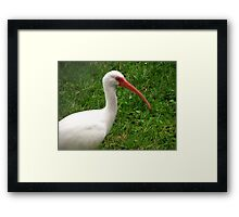 I'll be Seeing you Around! Framed Print