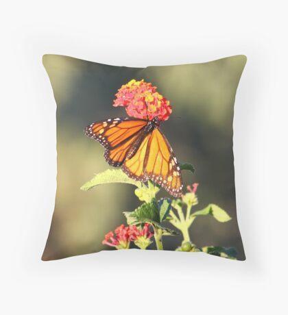 Monarch on Lantana Throw Pillow