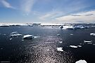 Reflecting on Antarctica 007 by Karl David Hill