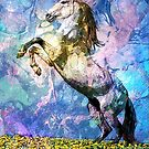HORSE by Tammera